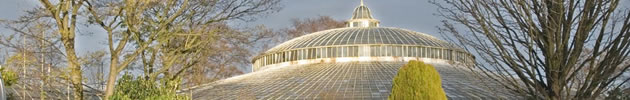 Kibble Palace from SE